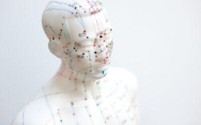En akupunktur uddannelse er for dig, der elsker læring om kroppens anatomi